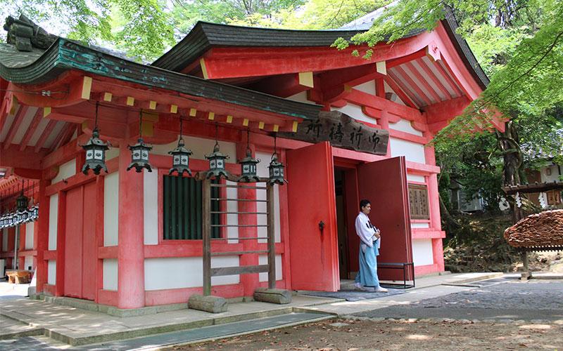 que visitar a Nara