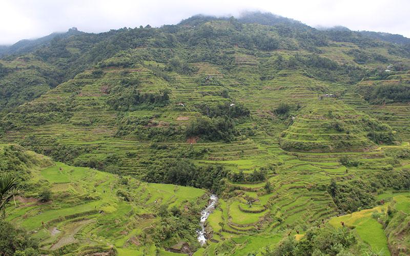 Filipines amb motxilla