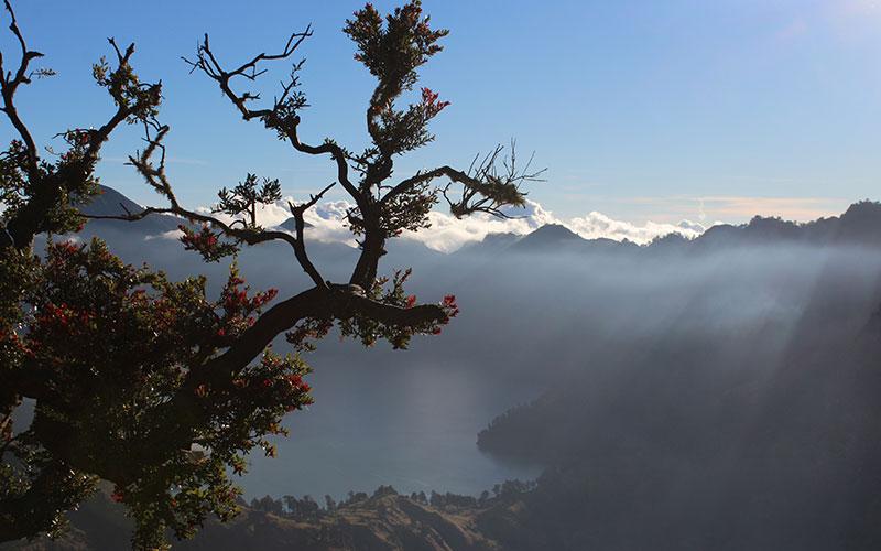 volcà rinjani indonesia gratis