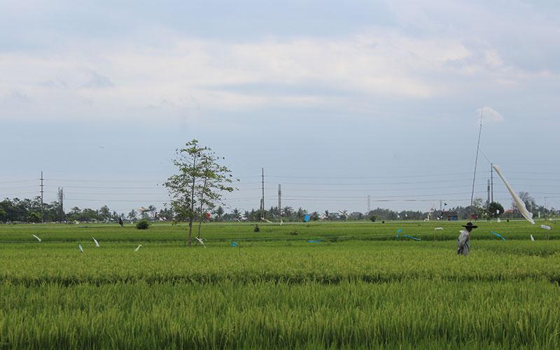 Indonèsia amb pressupost motxiler