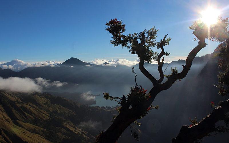 indonesia-volca-rianji-motxiller