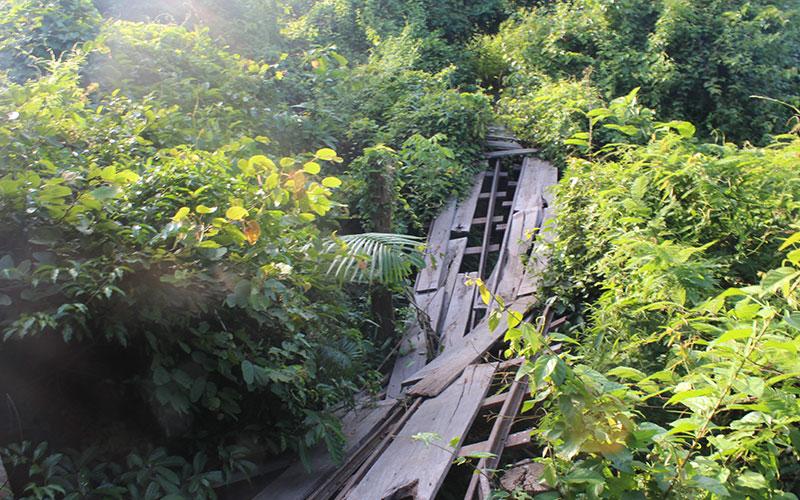 ruta alternativa per visitar les 4.000 illes Laos