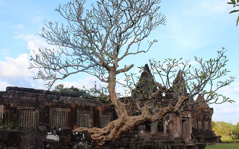temple de Champasak