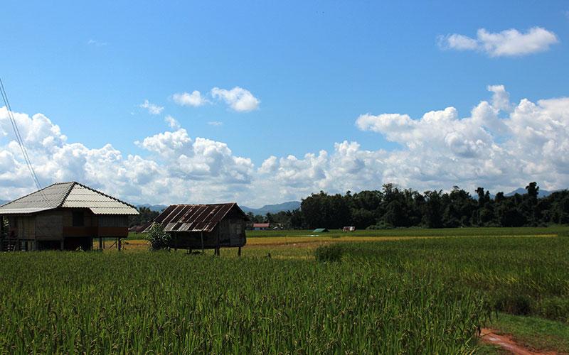 Luang Namtha (Laos)