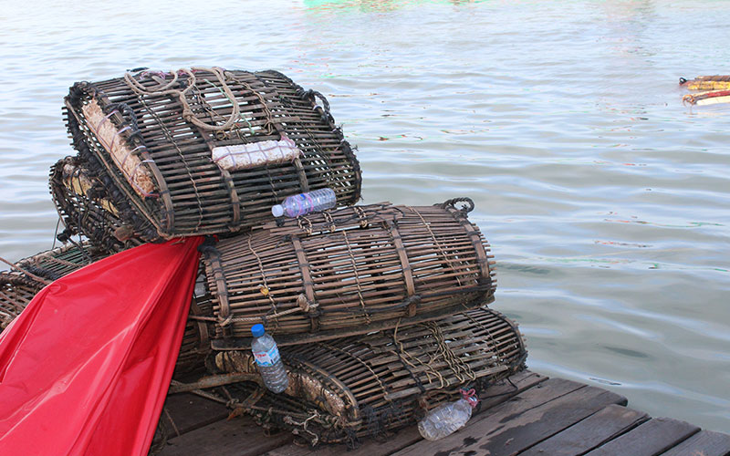 De Cambodja a Viet Nam, deixant-se portar