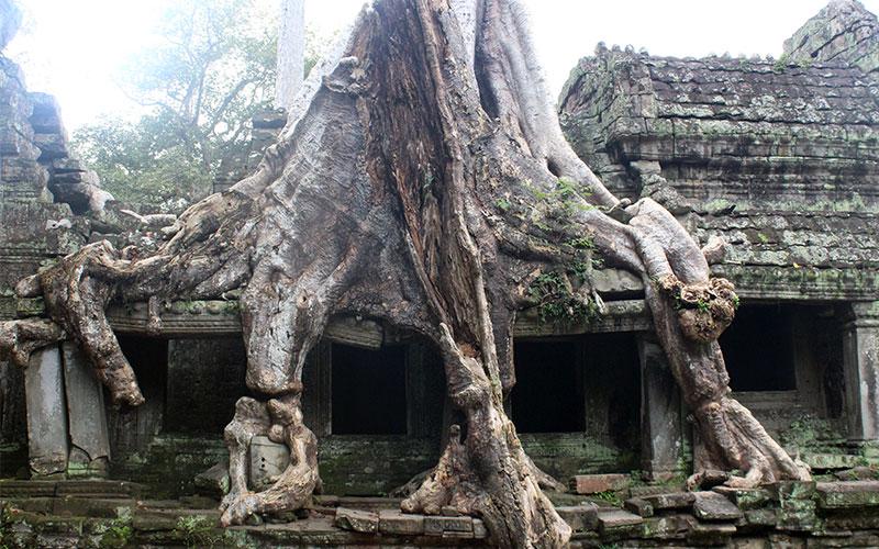 que has de saber per visitar els Temples d'Angkor a Cambodja