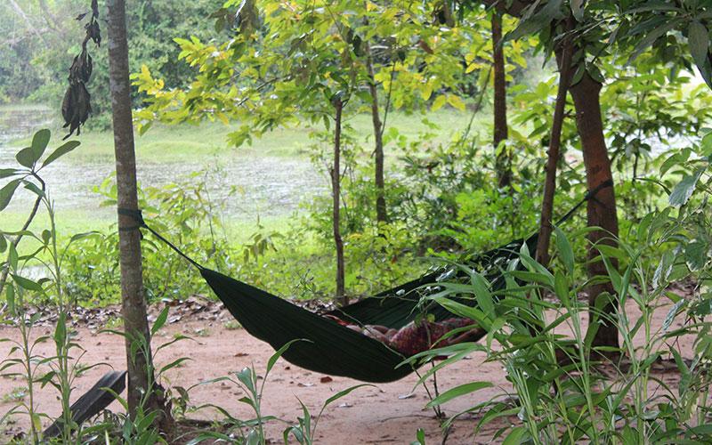 les curiositats de Cambodja