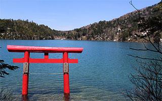 3 trucs per viatjar pel Japó que pot utilitzar tothom