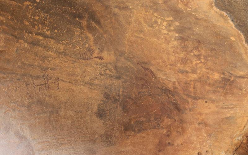 pintures rupestres el colgul les garrigues