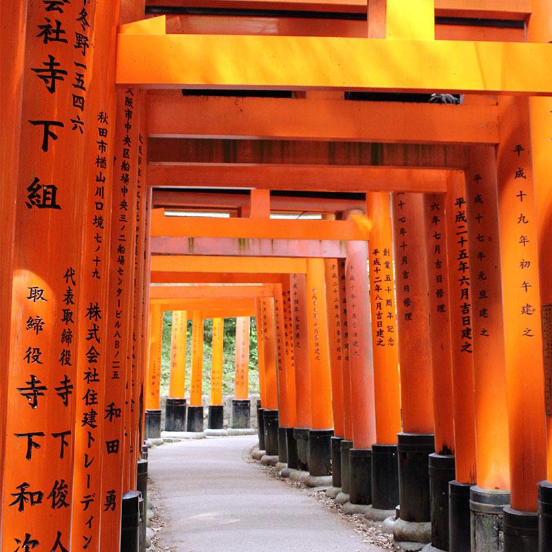 com anar a Fushimi Inari-Taisha
