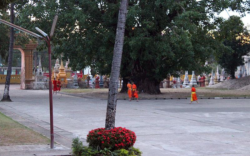 Els nens monjos