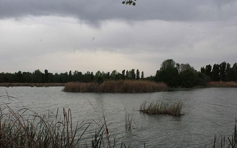 estany d'ivars pla d'urgell