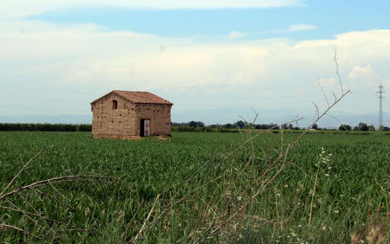 paisatge de l'urgell anglesola
