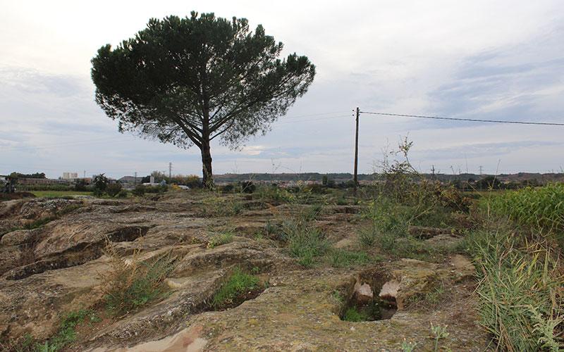 necròpolis rosselló