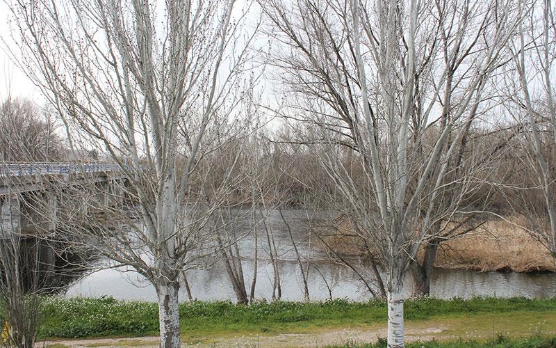 riu segre torres de segre