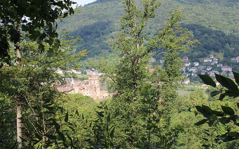 llocs imperdibles Heidelberg