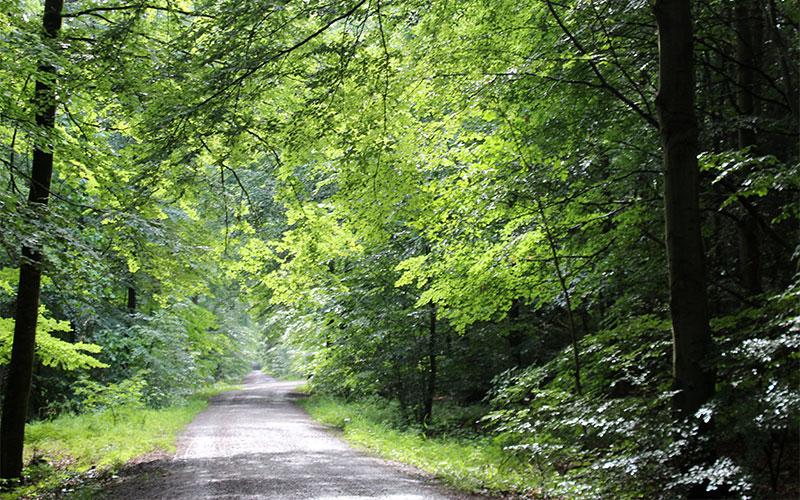 ruta natura gratis Stuttgart