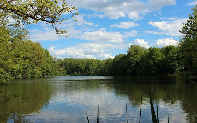 escapades a prop Stuttgart llac Pfaffensee