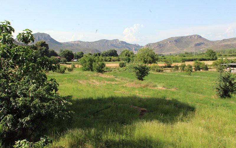 paisatge tipica alfarras